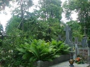 Cmentarz Farny