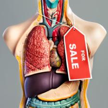 organs for sale