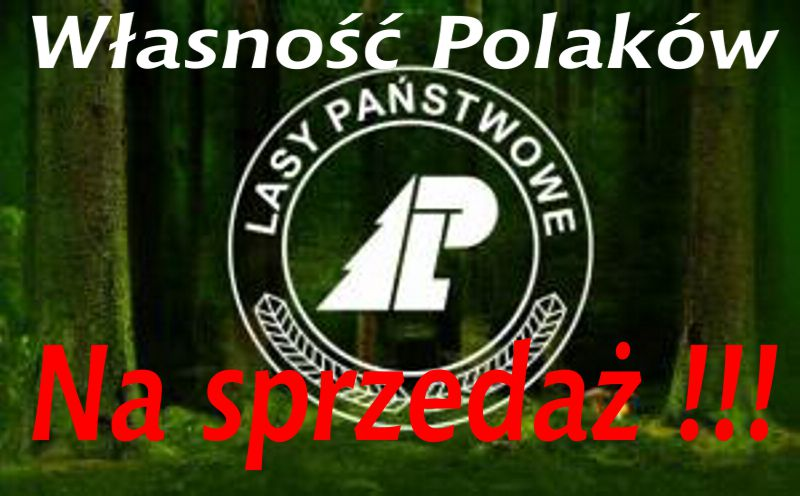 lasy_panstwowe