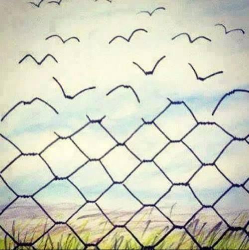 Wolność2