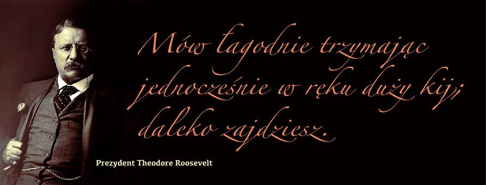 Roosevelt-Theodore-3aabbc