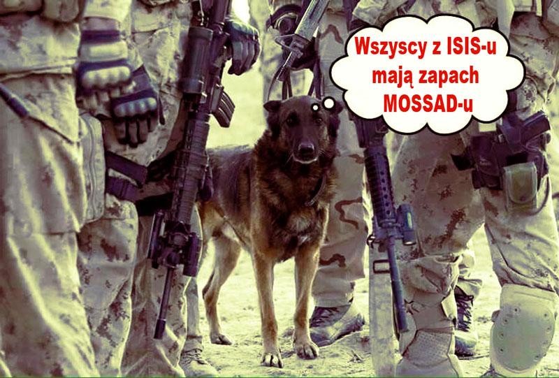 isis -mossad-pies